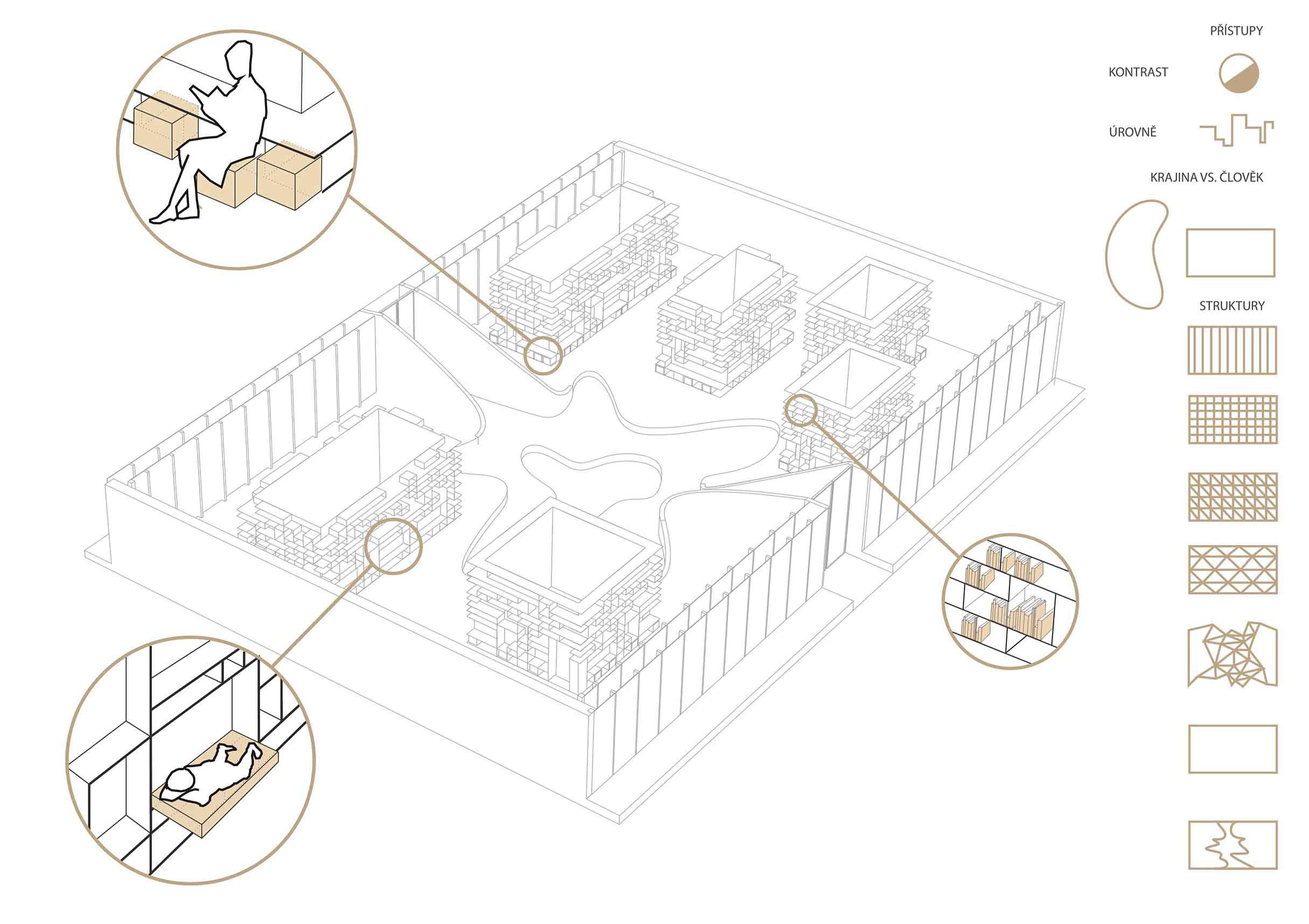 Polní knihovna - čárový pohled na interiér. Autor: Kurz architekti